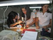 trabajo-de-laboratorio-4to-6