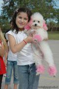 expo-mascotas-2009-148