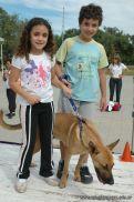 expo-mascotas-2009-158