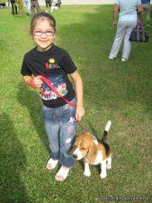 expo-mascotas-2009-18