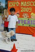 expo-mascotas-2009-213