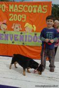 expo-mascotas-2009-214