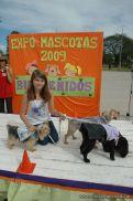 expo-mascotas-2009-218