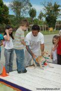 expo-mascotas-2009-231