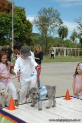 expo-mascotas-2009-236