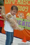 expo-mascotas-2009-242