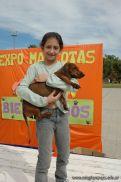 expo-mascotas-2009-254
