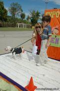 expo-mascotas-2009-255