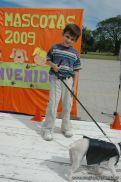 expo-mascotas-2009-256