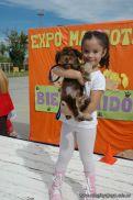 expo-mascotas-2009-257