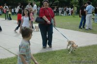 expo-mascotas-2009-280