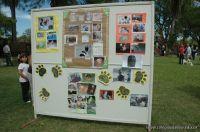 expo-mascotas-2009-282