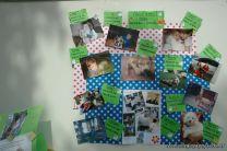 expo-mascotas-2009-321