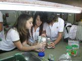 metodologia-en-laboratorio-4