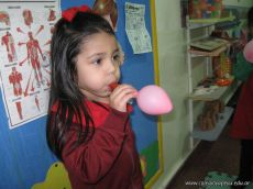 sistema-respiratorio-7