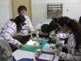centro-de-parasitologia-31