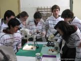 centro-de-parasitologia-34