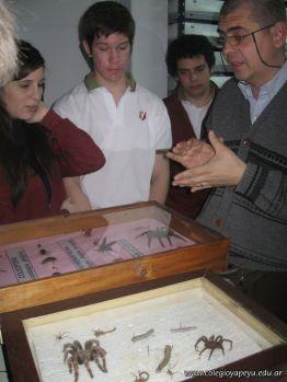 Museo de Cs Naturales 11