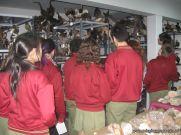 Museo de Cs Naturales 15