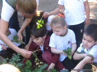 Día de Campo en el Jardín 21