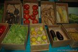 Expo Primaria 2009 71
