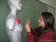Mujer Bionica 33