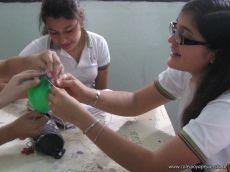 Modelos Biologicos 5