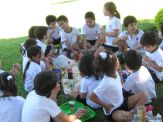 1ros Dias de Campo de Primaria 38