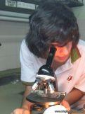 Microscopio 9
