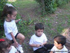 Jardin en la Huerta 10