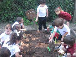Jardin en la Huerta 11