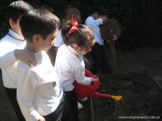 Jardin en la Huerta 167