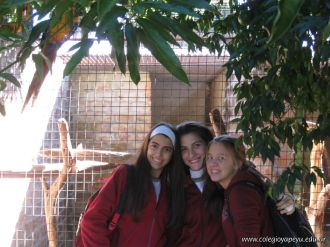 Corrientes Loro Park 61