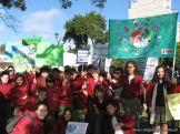 Manifestacion Medio Ambiente 25