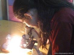 Utilizando el Microscopio 33