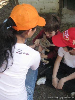 Granja La Ilusion 2010 287