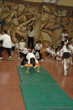 Muestra de Educacion Fisica 79