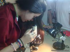 Resultado de la Experiencia con Microorganismos 16