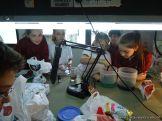 5to grado Experimentando en el Laboratorio 24
