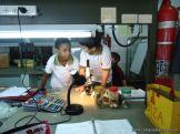 Observacion en Microscopio 24