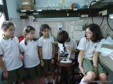 Observacion en Microscopio 5