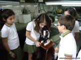 Observacion en Microscopio 8
