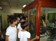 Visita al Museo de Ciencias Naturales 44