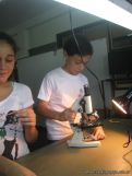 Observando por el Microscopio 8
