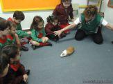 Preparativos y Festejos por el Dia del Animal 104