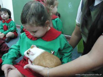 Preparativos y Festejos por el Dia del Animal 64