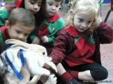 Preparativos y Festejos por el Dia del Animal 73