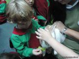 Preparativos y Festejos por el Dia del Animal 79