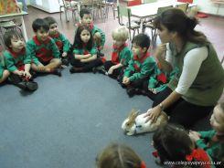 Preparativos y Festejos por el Dia del Animal 88