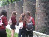 Visita al Loro Park 9